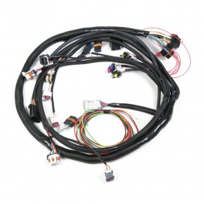 Holley LS2 Main Harness for HP & Dominator EFI