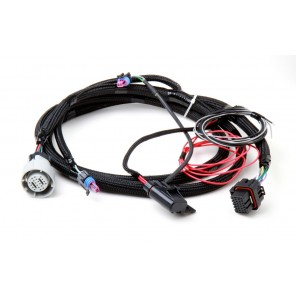 Holley Dominator EFI GM 4L60 4L80E Transmission Harness