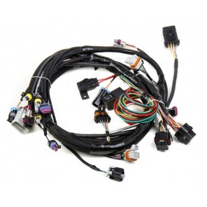 Holley LS1 Main Harness for HP & Dominator EFI